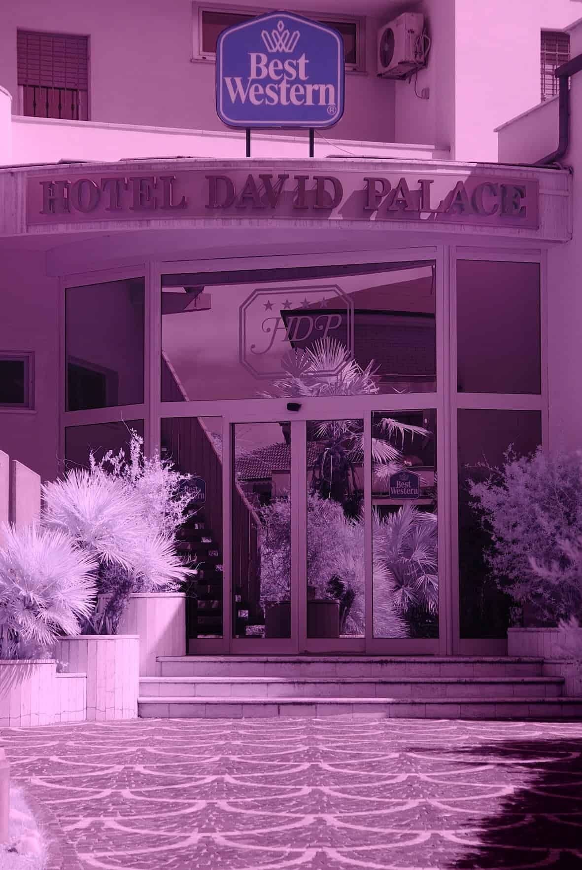 Hotel David Palace Porto San Giorgio c