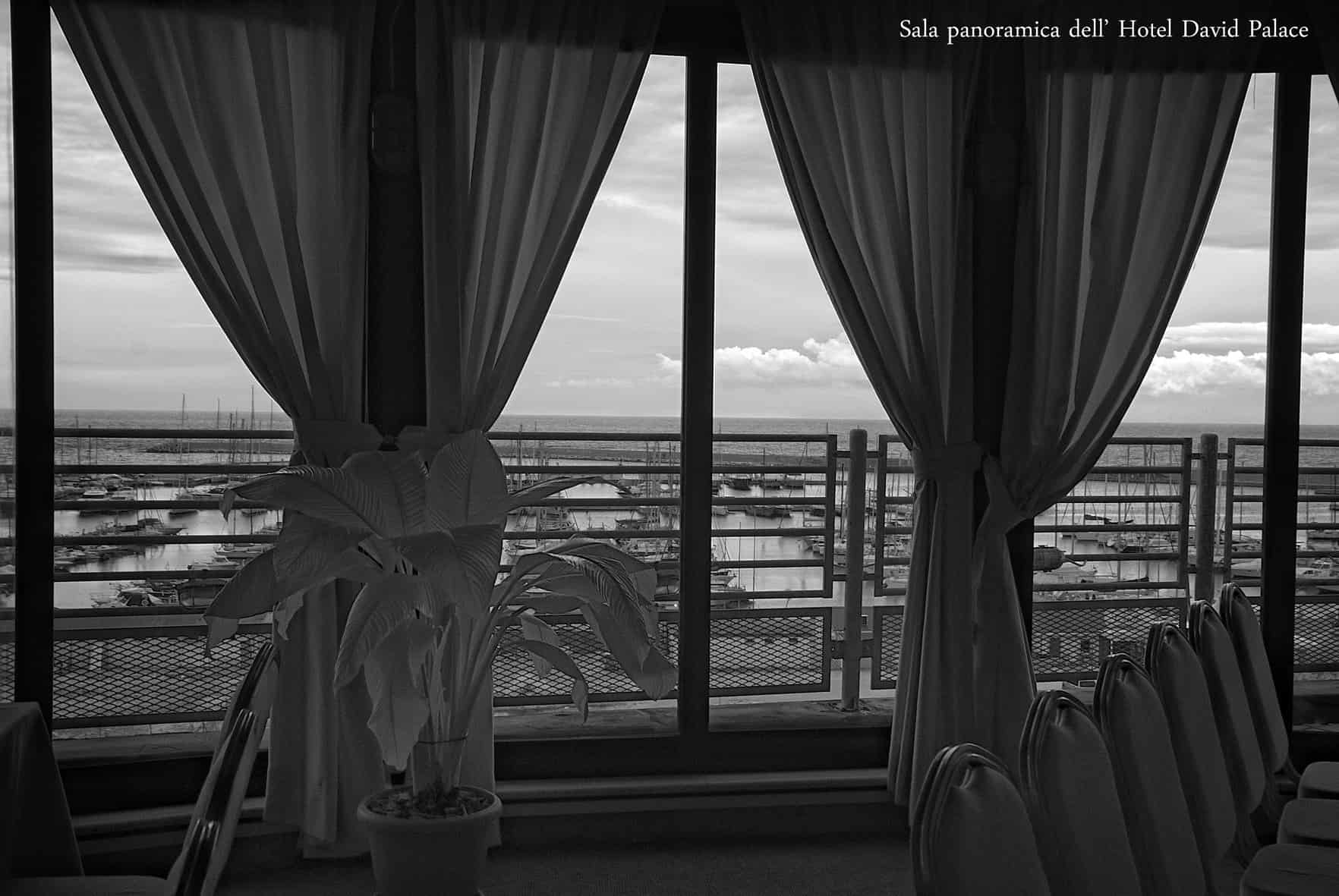 Hotel David Palace a